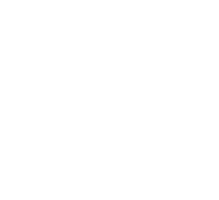 Campervan CookOut